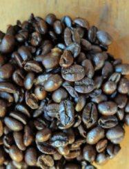 Jamaica Blue Mountain Blend coffee beans.