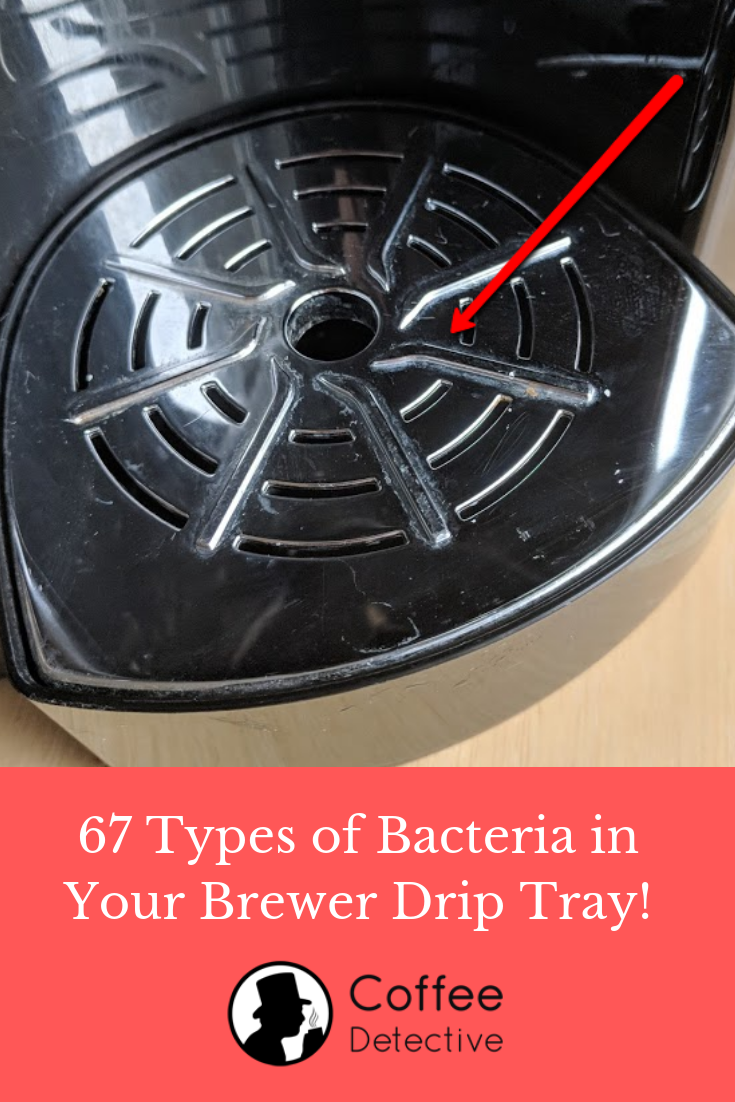 67 types of bacteria in your coffee maker drip tray