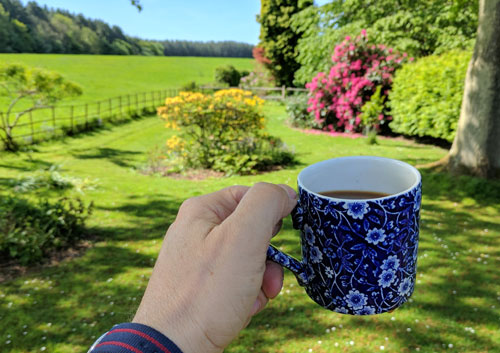 Coffee in the garden.