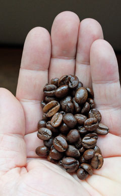 Costa Rica coffee beans.
