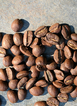 Light-roasted Peru Cenfrocafe coffee beans.