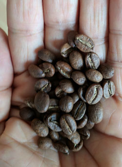 Light roast Colombia coffee beans