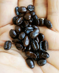 Quality coffee beans