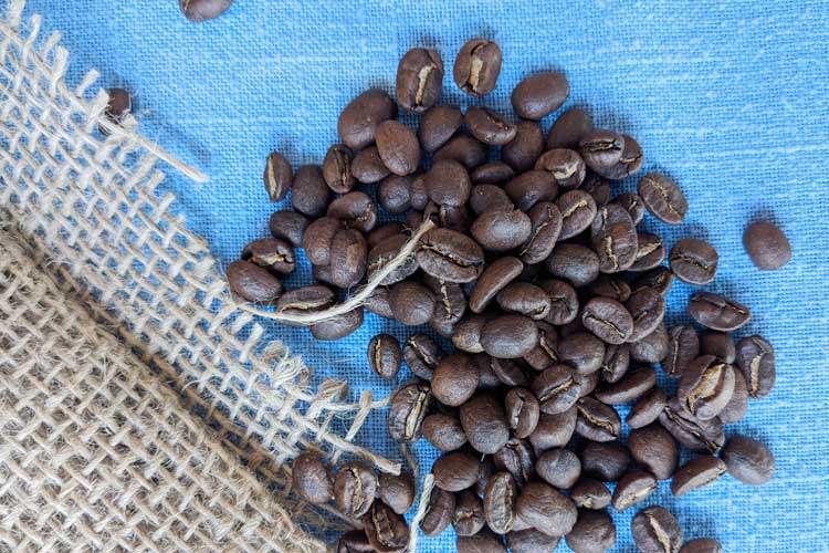 Medium roasted Bourbob coffee beans