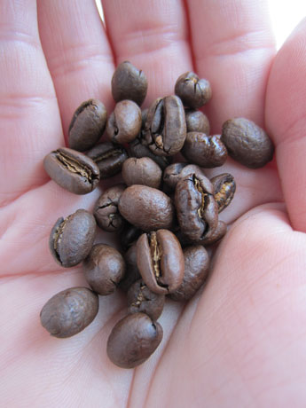 Caffeine in coffee beans