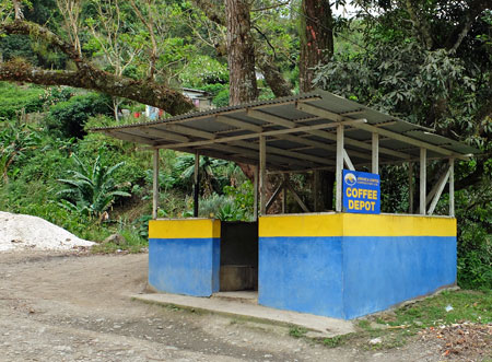 A coffee depot in Jamaica's Blue Mountains, where farmers bring their coffee to be taken for processing.