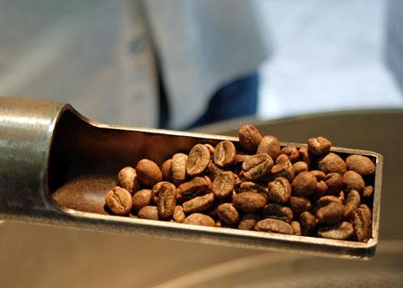 especialidad en café gourmet