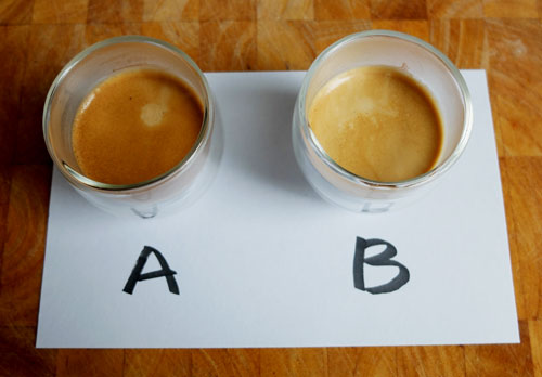 Hayman coffee taste test