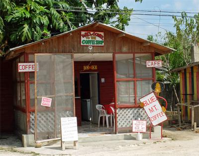 Where to find a cup of inexpensive Jamaican Blue Mountain coffee.