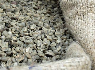 Green coffee beans, ready for shipping.